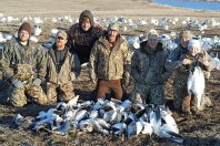 Spring Snow Goose Hunts 2014_055
