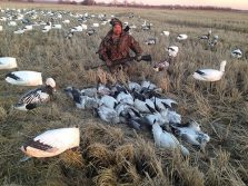 Spring Snow Goose Hunts 2014_060