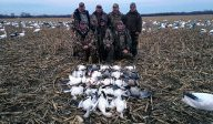 Spring Snow Goose Hunts 2014_081