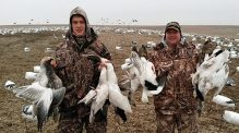 Spring Snow Goose Hunts 2014_096