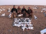 February 24…another example of a great February snow goose hunting. This party shot 38 for the day...10 in the morning and 28 in the afternoon. I had hunted the morning with another party that shot 24 on their half day hunt. I then came to this field giving my guide the afternoon off and shot 28 with them. Between the two parties I ended the day with 52. February should not be overlook as it has some great hunting opportunities.