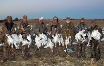 Above average February snow goose hunt.
