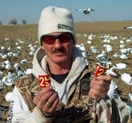 Here is Up North Outdoors guide Curt Schrader. Curt rarely leaves the field even when the hunters break for lunch. This day his hunters returned from lunch just in time to watch from the field drive as Curt shot this red neck collar on a blue goose for a migrating flock of snow geese. Although the middle of the day can be slow a few close working migrating snow goose flocks can add a lot of birds to the day's total. The neck collar was shot off and it took several minutes of searching to find both halves.