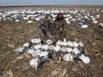 spring-snow-goose-hunt-2013-10