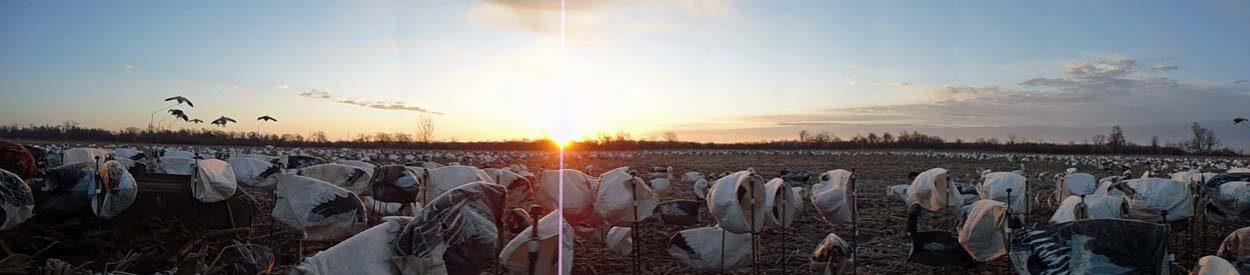 spring-snow-goose-hunt-2013-106