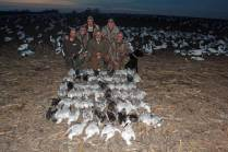 spring-snow-goose-hunt-2013-45