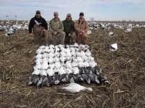 spring-snow-goose-hunt-2013-6