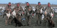 spring-snow-goose-hunt-2013-93