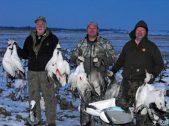 spring-snow-goose-hunt-2013-98