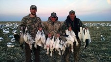 Snow Goose Hunters