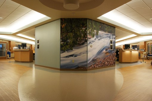 WAUKESHA MEMORIAL HOSPITAL INTENSIVE CARE UNIT