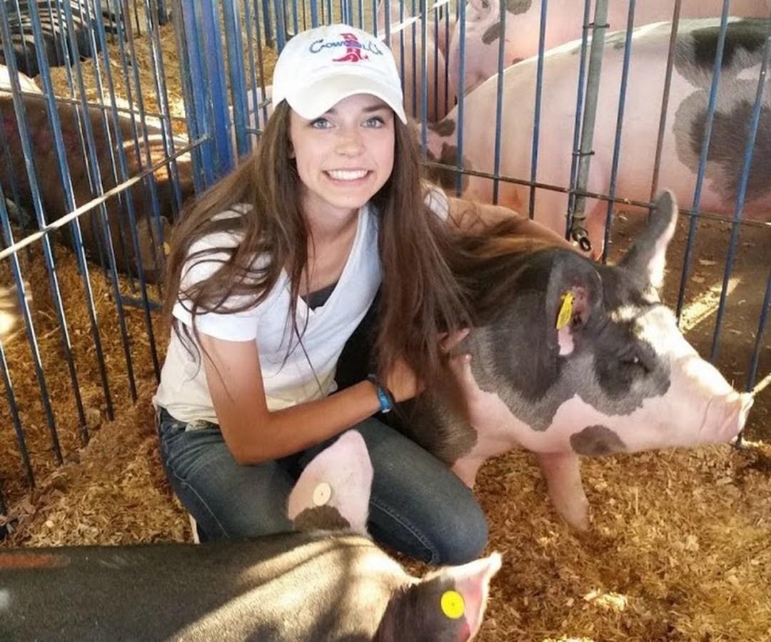 Alexis Odermann + Pig