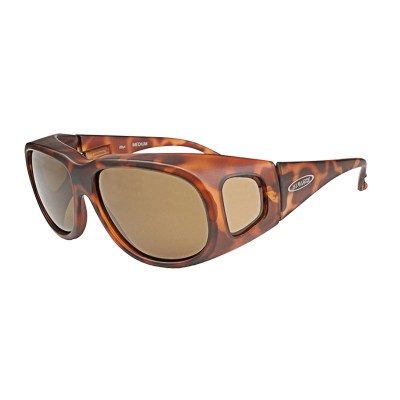 vision 2x4 sunglasses