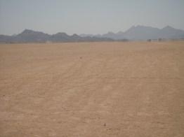 Fata Morgana in der Wüste bei Hurghada - Quad fahren