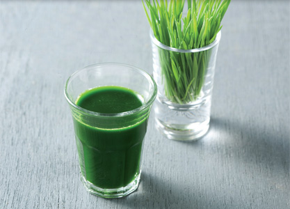 Image result for wheatgrass liquid