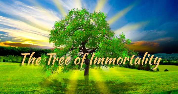 The Tree of Immortalityv2