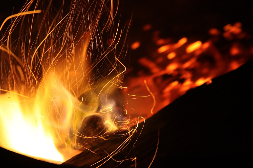 What is the FIRE movement?