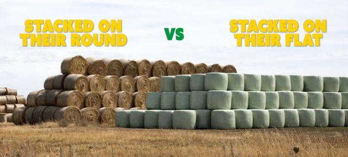 Dry Hay vs Baled Silage.jpg