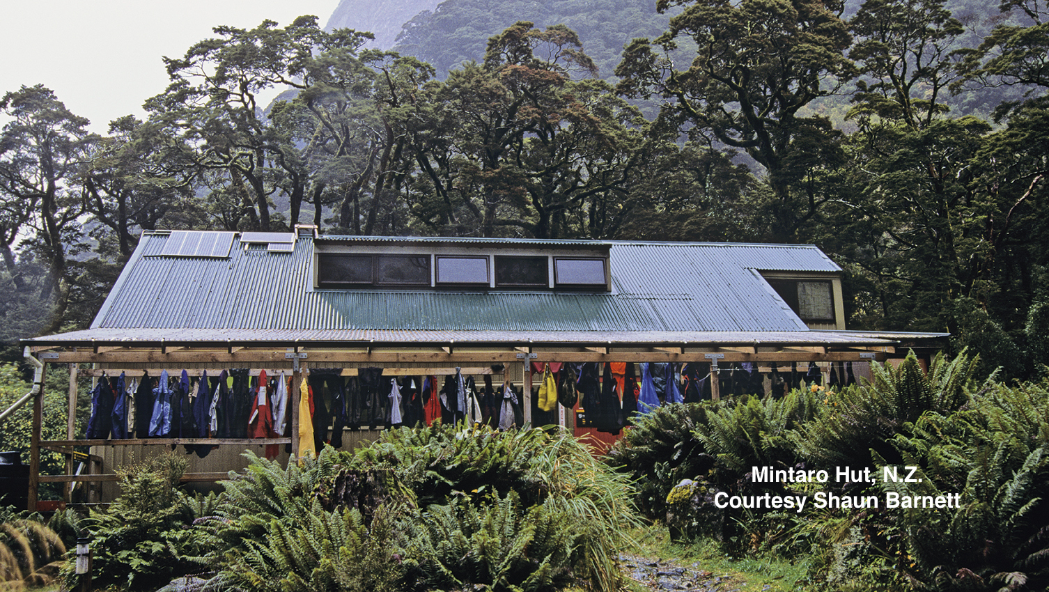 Associated with the 1966-67 Freedom Walks on Milford Track