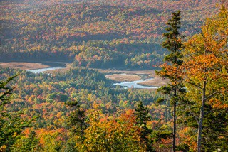 Stratton Brook Foliage, Maine Huts & Trails, hut2hut