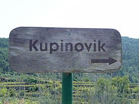 Signpost to Kupinovik
