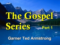 The Gospel - Series 1
