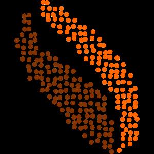 dataseed_logo