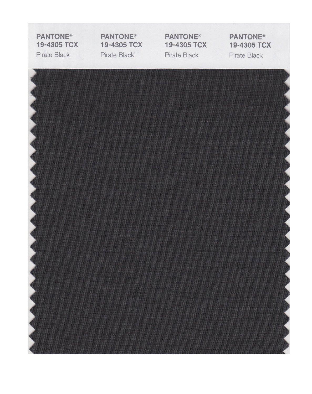 buy pantone smart swatch 19 4305 pirate black
