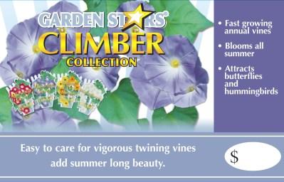Garden Stars Climber