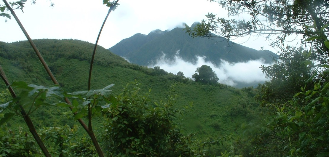Virunga Mountains Wildlife Sanctuary for Gorillas and Elephants