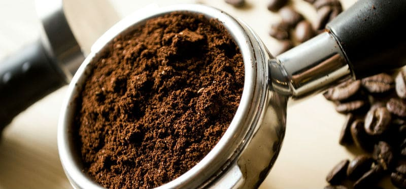 Should you use coffee grounds for hydrangeas