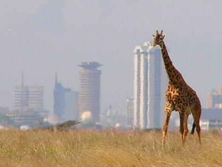 World Bank awards Kenya with $110 million for alternative energy projects