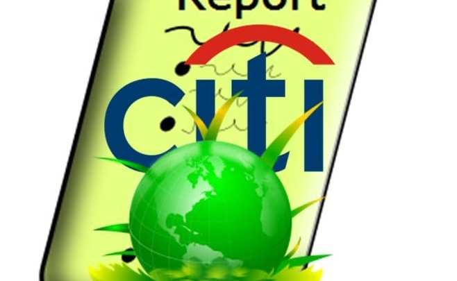 Citigroup shows optimism for renewable energy future