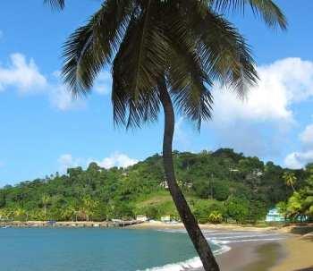 Climate Change - Caribbean