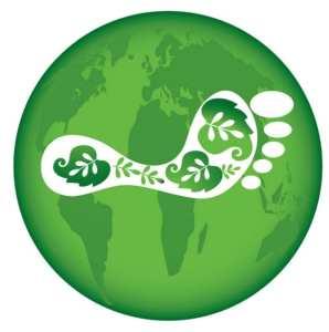 fuel cells - carbon footprint