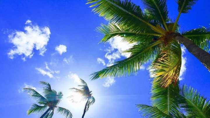 Hawaii aims to go carbon neutral