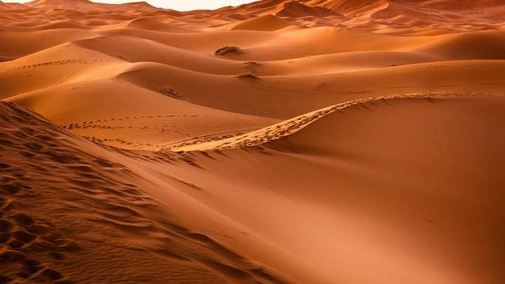 Wind and solar power could increase rain and vegetation in the Sahara Desert