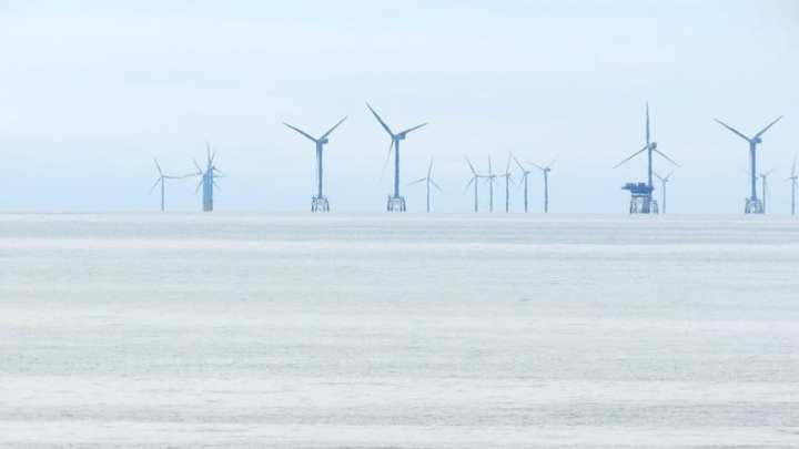 Offshore wind turbines have forced loons into smaller habitats, study says