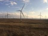 Scotland Wind Energy - Whitlee Wind Farm