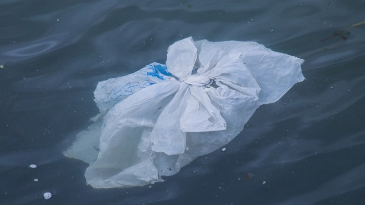The Ocean Cleanup system is successfully collecting plastic waste from Pacific Ocean