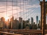 New York Green Cities