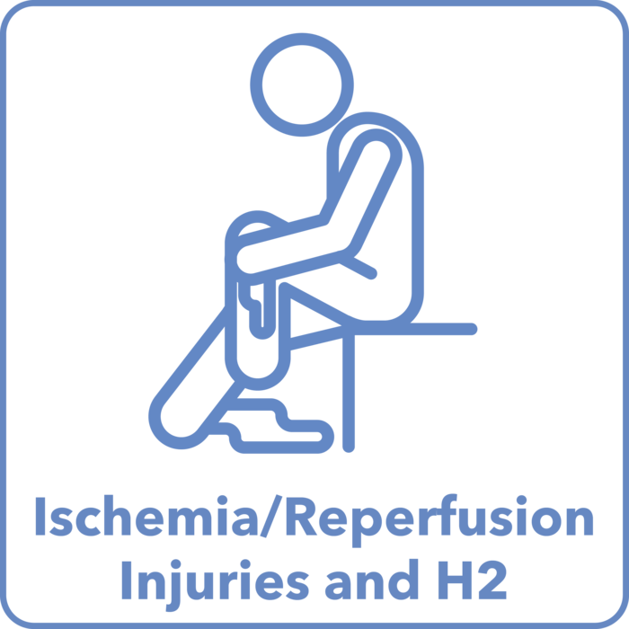 Ischemia/Reperfusion Injuries Studies