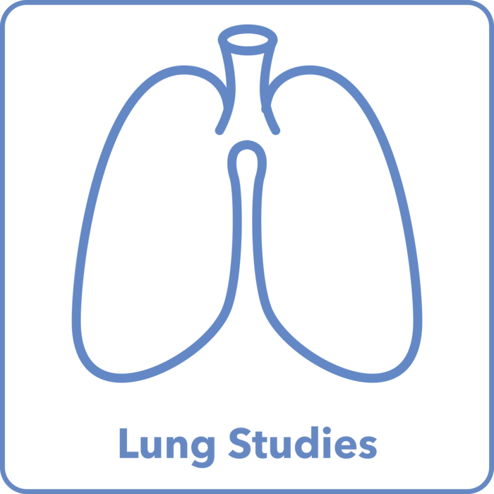 Lung Studies