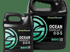 Ocean Magic all sizes