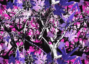 Forêt colorée Rose