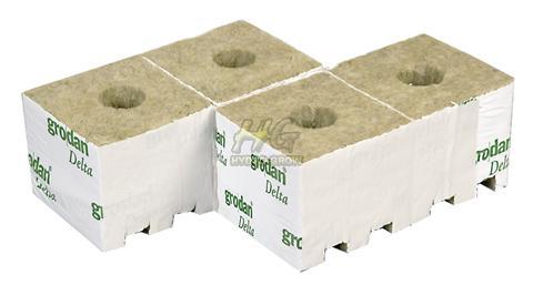 grodan rockwool cubes