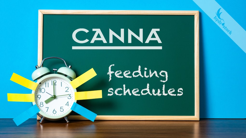 Ultimate CANNA Feeding Schedules