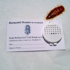 détecteur larves dermestes