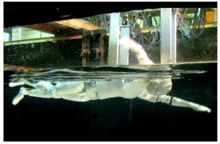 swimming japanese humanoid robot