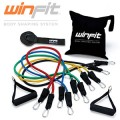 zwnes-antistasis-megales-winfit